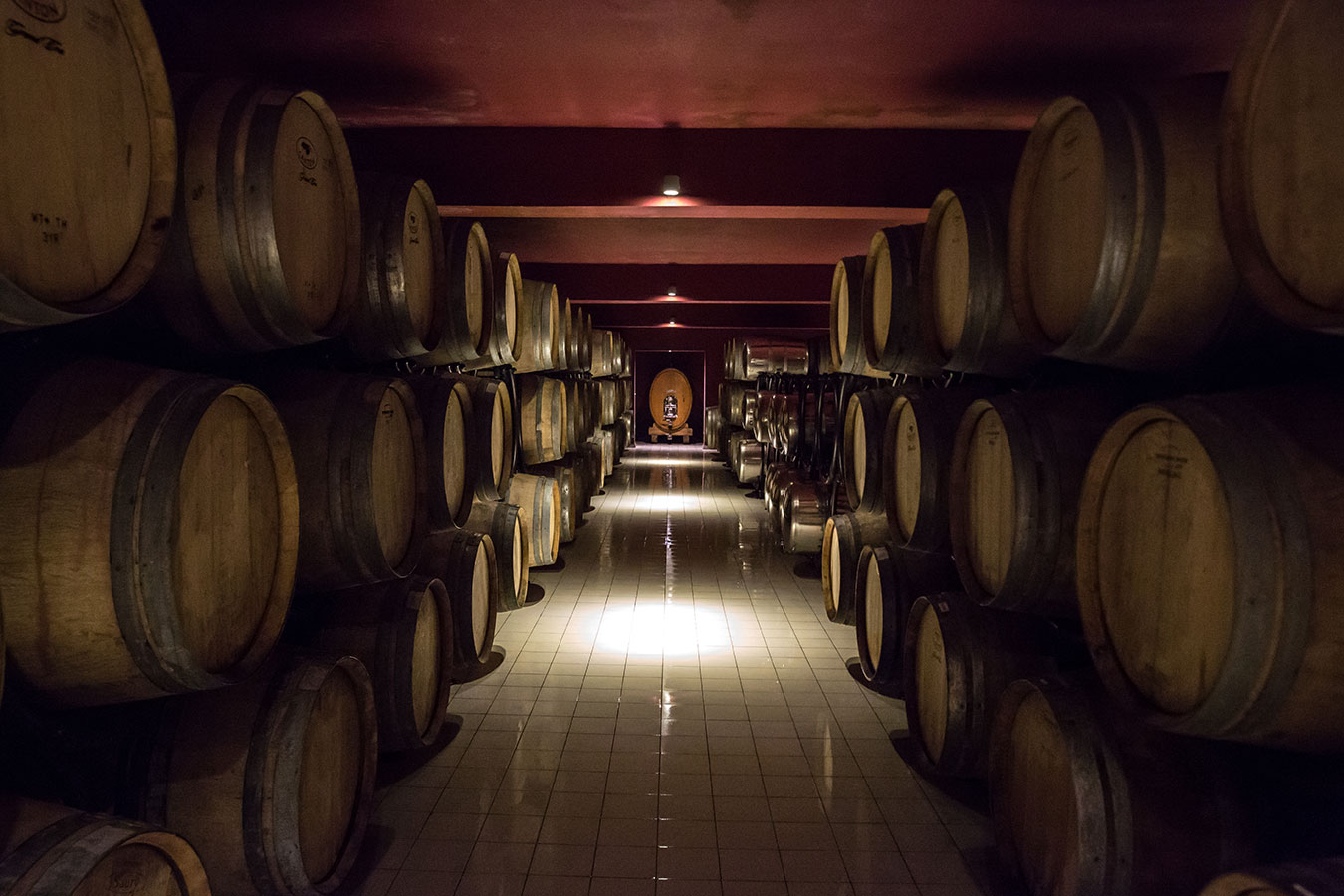 Winery Baku